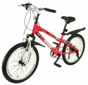 Royal Baby RB20B-6S Freestyle 6 Speed Steel 20
